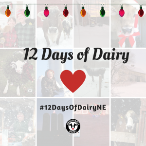 Celebrate 12 Days of Dairy with us!
