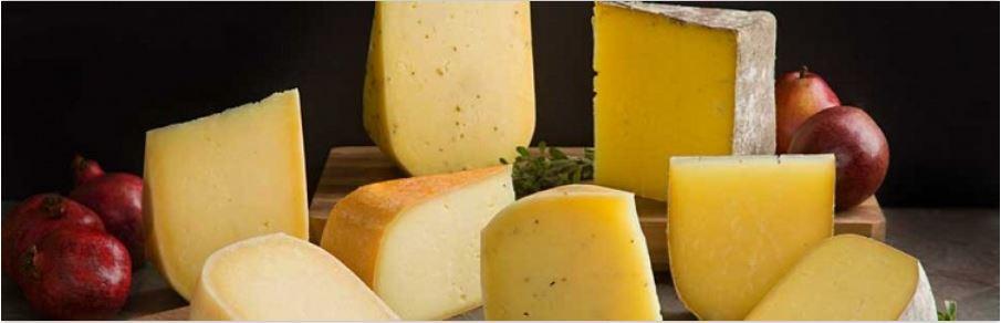 GV cheese