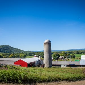 Dairy Farms: Part of the Climate Solution