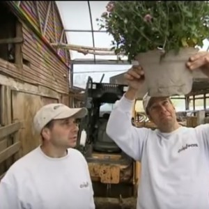 Mike Rowe Dirty Jobs Cow Pots