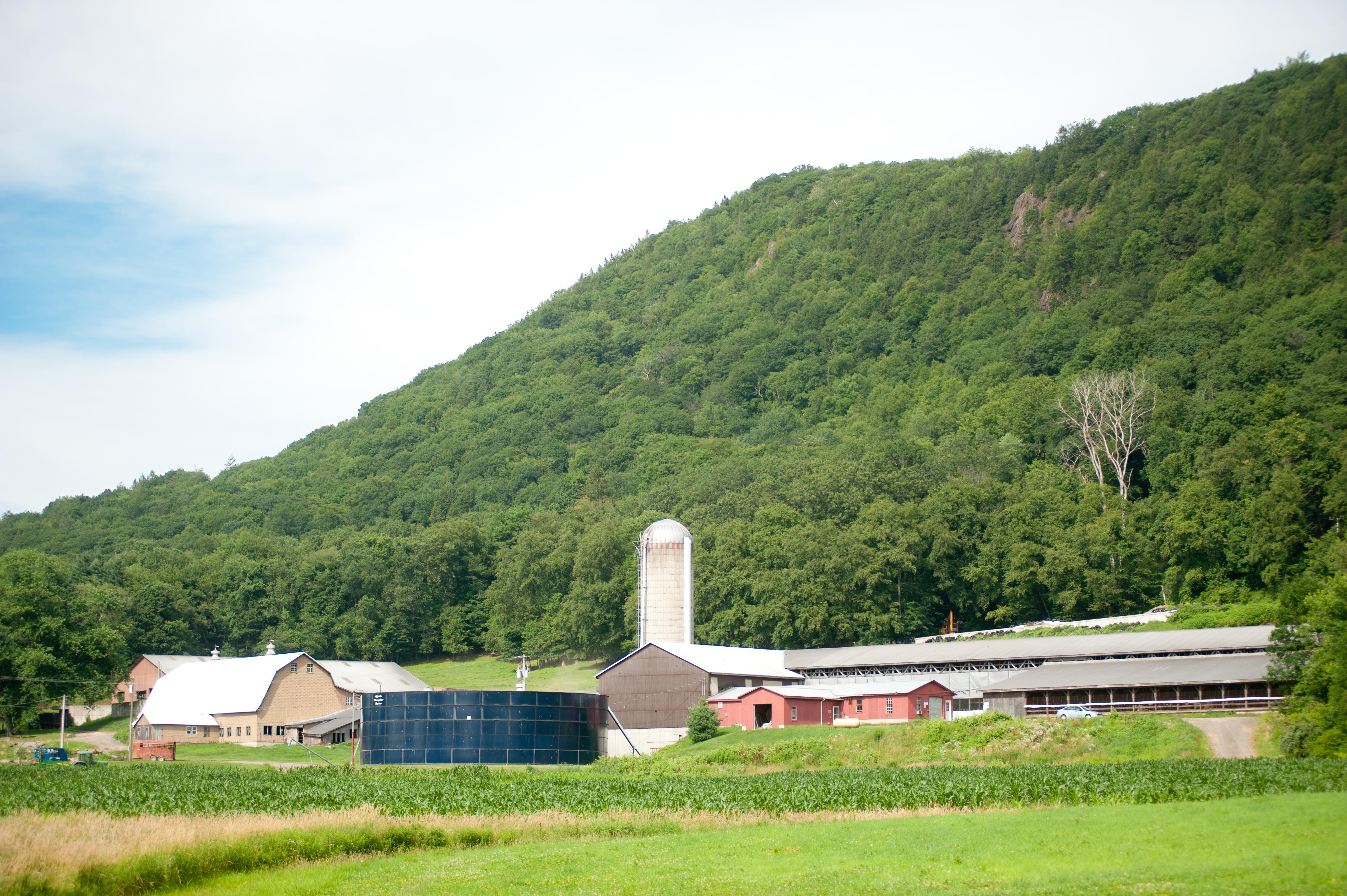 farm dairy landscape